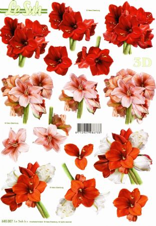Amaryllis Flowers Die Cut 3d Decoupage Sheet From Le Suh - NO CUTTING